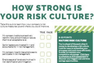 risk-culture-thumb.png