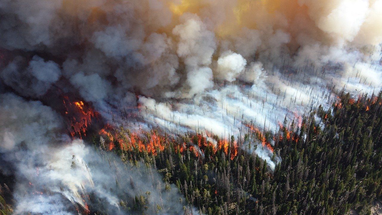 climate-risk-fires