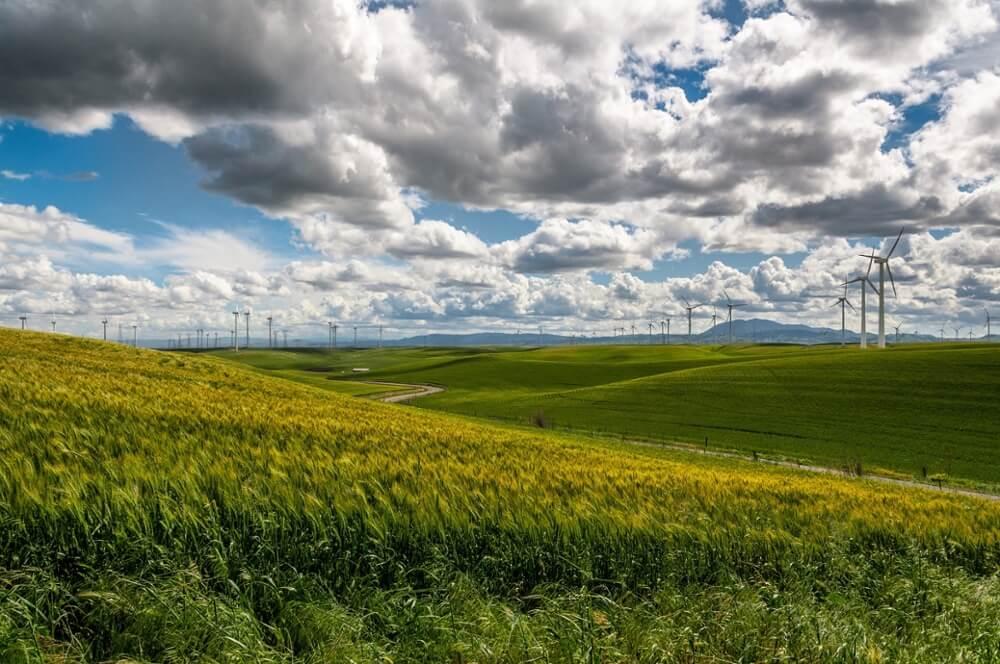 sustainability-landscape