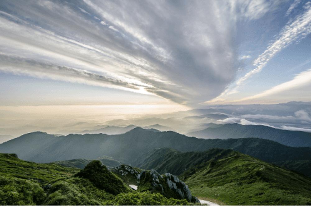 environmental management change